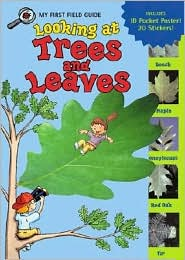 Looking at Trees and Leaves