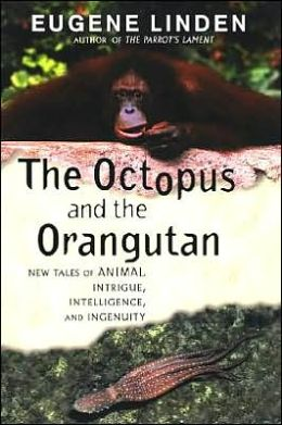 The Octopus and the Orangutan: New Tales of Animal Intrigue, Intelligence and Ingenuity