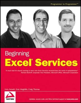 Beginning Excel Services