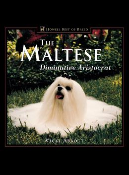 The Maltese: Diminutive Aristocrat
