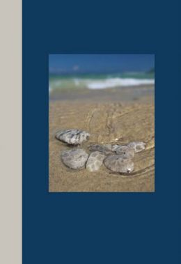 Northern Michigan Journal: Petoskey Stones