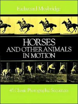 Horses & Other Animals in Motion