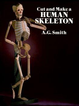 Cut and Make a Human Skeleton