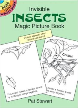 Invisible Insects Magic Picture Book