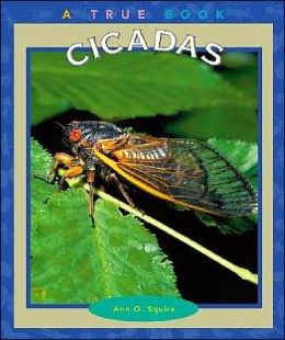 Cicadas (True Book Series)