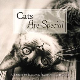 Cats Are Special: A Tribute to Elegance, Playfulness, and Grace