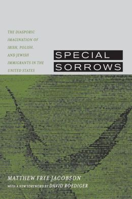 Special Sorrows: The Diasporic Imagination of Irish, Polish, and Jewish Immigrants in the United States
