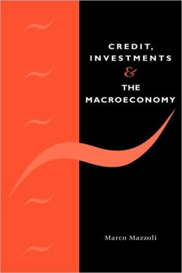 Credit, Investments and the Macroeconomy: A Few Open Issues