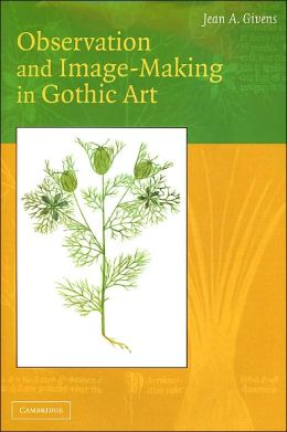 Observation and Image-Making in Gothic Art
