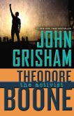Book Cover Image. Title: Theodore Boone:  The Activist, Author: John Grisham