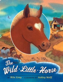 The Wild Little Horse