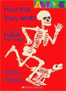 How Your Body Works: A Good Look Inside You Insides