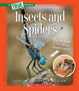 Insects and Spiders