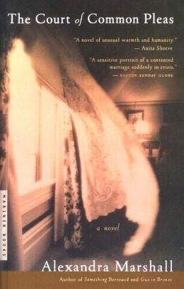 The Court of Common Pleas: A Novel