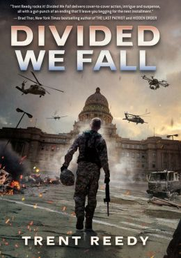 Divided We Fall (Divided We Fall Series #1)