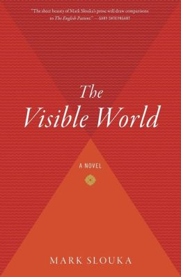 The Visible World: A Novel
