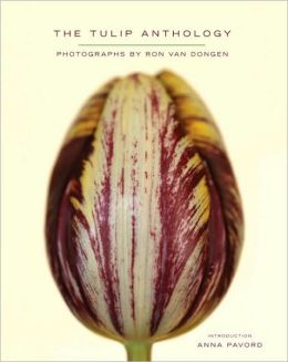 Tulip Anthology