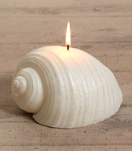 White Sea Shell Unscented Italian Candle 7''