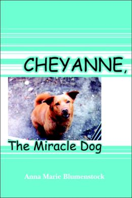 Cheyanne, the Miracle Dog