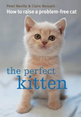 The Perfect Kitten. Peter Neville & Claire Bessant