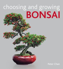 Choosing and Growing Bonsai
