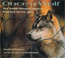 Once a Wolf: How Wildlife Biologists Fought to Bring Back the Gray Wolf (Turtleback School & Library Binding Edition)