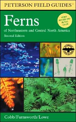 Peterson Field Guide to Ferns, Second Edition: Northeastern and Central North America