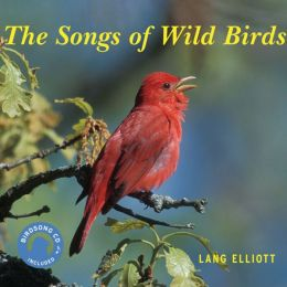 The Songs of Wild Birds
