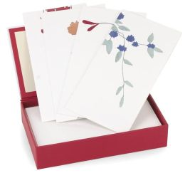 Zen Watercolor Boxed Notecards (Set of 8)