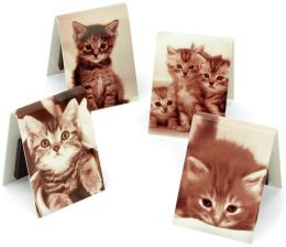 Black/White Assorted Cat Photo Magnetic Page Clips