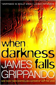 When Darkness Falls (Jack Swyteck Series #6)