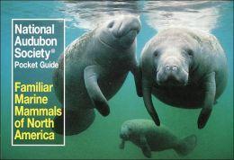 Familiar Marine Mammals North America