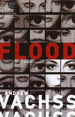 Flood (Burke Series #1)