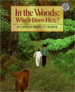 In the Woods - Who's Been Here?
