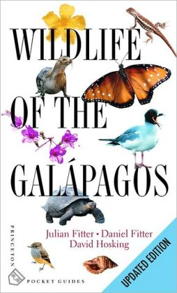 Wildlife of the Galapagos: