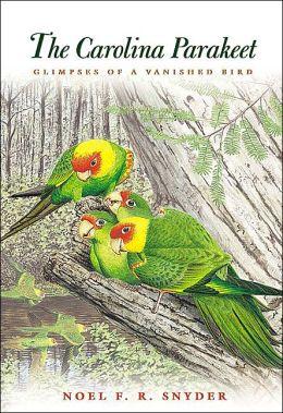 The Carolina Parakeet: Glimpses of a Vanished Bird
