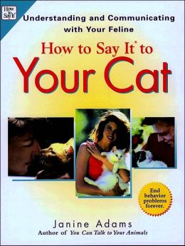 How to Say It to Your Cat: Understanding and Communicating with Your Feline