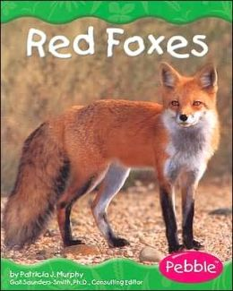 Grassland Animals: Red Foxes