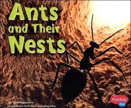 Ants and Their Nests (Animal Homes Series)