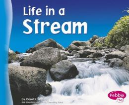 Life in a Stream