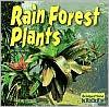 Rain Forest Plants