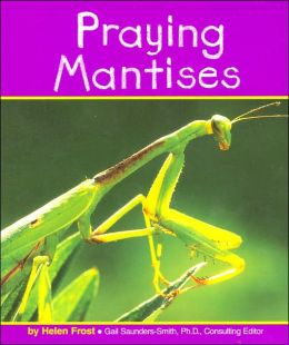Praying Mantises (Insects Series)