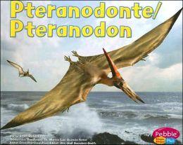 Pteranodonte/Pteranodon