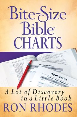 Bite-Size Bible Charts: A Lot of Discovery in a Little Book
