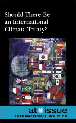 Should There Be an International Climate Treaty?