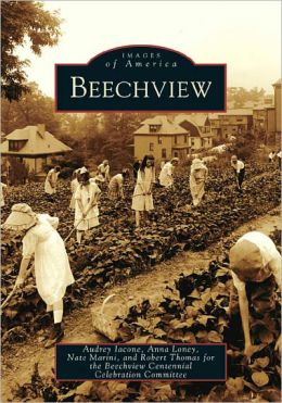 Beechview, Pennsylvania (Images of America Series)
