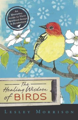 The Healing Wisdom of Birds: An Everyday Guide to Their Spiritual Songs and Symbolism