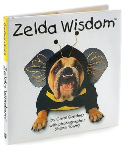 Zelda Wisdom