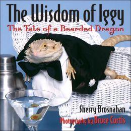The Wisdom of Iggy