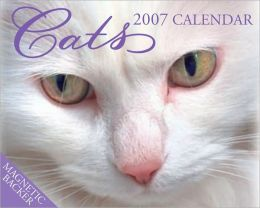 2007 Cats Mini Box Calendar